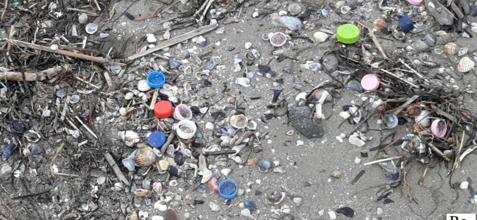 associazione progetto rifiuti puliamo il mondo